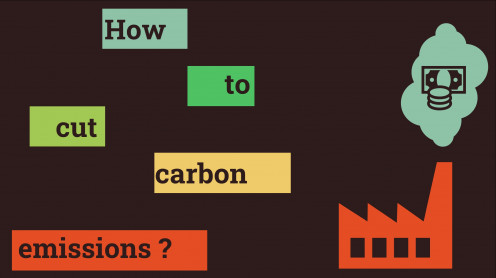 How to cut carbon emissions ?
